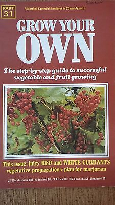 Grow Your Own FRUIT CURRANTS Veg Seeds Marshall Cavendish Handbook Part 31