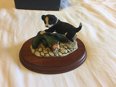 """Border Fine Arts """"Not My Size"""" Puppy & Kitten Figure RR02 With Box!"""