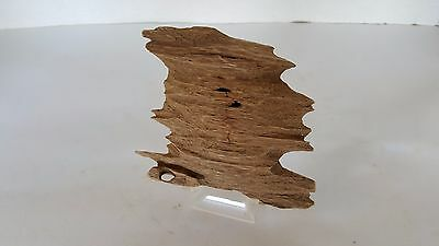 nice piece agarwood chip from vietnam , good sweet scent.....