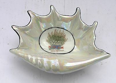 Antique Crested / Motto Ware Bone China Conch Shell - Lucky White Heather