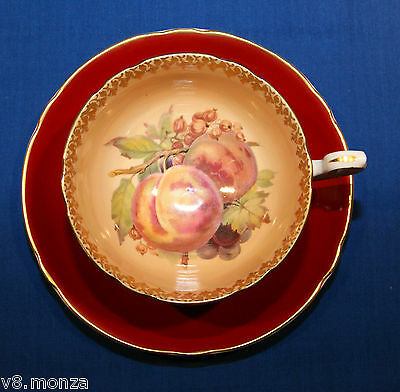 1938-66 Shelley Fruit Centered Fine Bone China Teacup & Saucer Duo ☆ # 0670