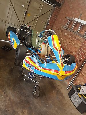 2011 Alonso kart + complete Rotax max package