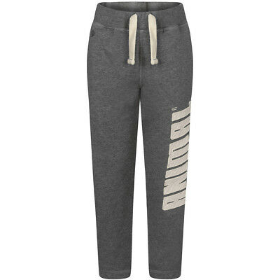 Animal Boys Hammar Print Branding Sporty Stone Washed Sweat Pant Grey