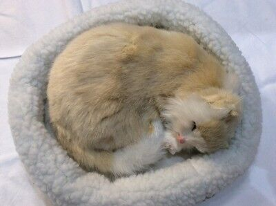 Emulation Sleeping Breathing Cream White Cat Toy Pet with Woollen Bed