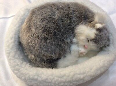 Emulation Sleeping Breathing Grey White Cat Toy Pet with Woollen Bed