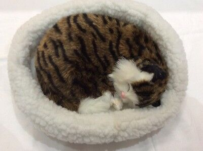 Emulation Sleeping Breathing Tabby Cat Toy Pet with Woollen Bed