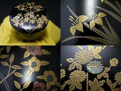 Japanese Lacquer Wooden Tea Caddy KESEN makie Chu-Natsume (607)