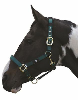 Hy Deluxe Padded Horse Pony Head Collar Various Colours 11238P