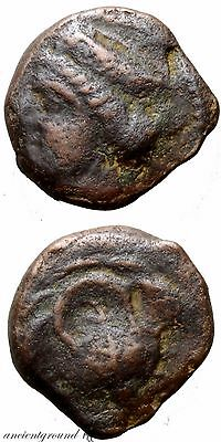 Rare Ancient Greek Coin Rhodes Ae 10 Rose , Aphrodite Head