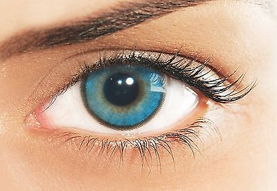 Lentilles De Couleur Blue SOLOTICA 1 an Hidrocharme Azul / Color Lenses 1 Year