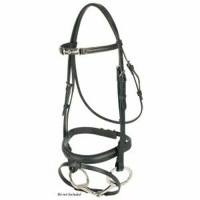Jeremy and Lord Equestrian Bridle