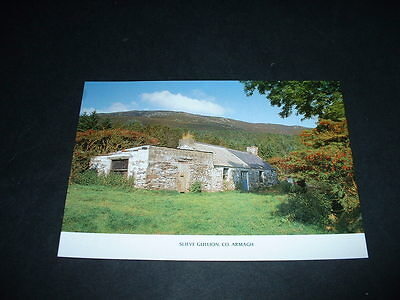 N.IRELAND  POSTCARD SLIEVE GULLION  Co ARMAGH