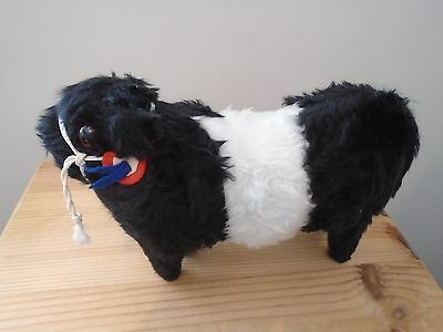 BLACK/WHITE HEIFER ~BELTED GALLOWAY~WITH ROSETTE~26cms LENGTH~HEIGHT 17.5cms