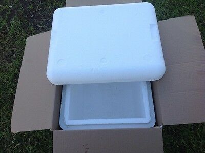 "Styrofoam Insulated  Shipping Cooler - Container 14""x13""X11"" id"