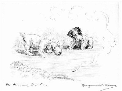 Sealyham Puppy Terrier DOGs Marguerite Kirmse 1925 8 New Large Note Cards