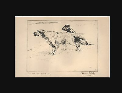 English Setter & Labrador Dogs Vernon Stokes 1930 Dry Point Matted 9X12 Print
