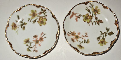 Two Lovely c1890 Haviland Hand Painted Butter Pats, Missouri Glass Co. St. Louis