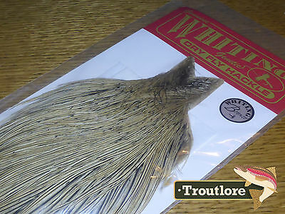Whiting Farms Dry Fly Cock Neck Golden Badger New Bronze Fly Tying Cape Feathers