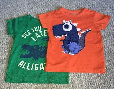 Baby Boys 9-12 Months Next T-Shirts Hardly Worn
