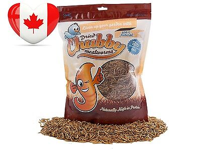 2 Lbs 907g Chubby Dried Mealworms for Wild Birds etc. approx. 32,000 Free...