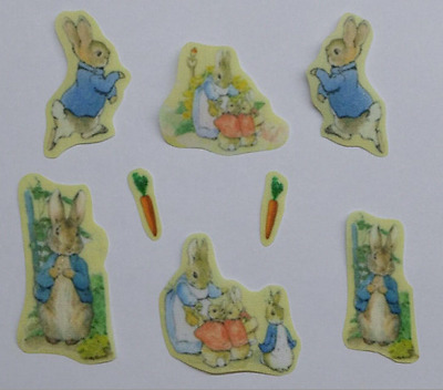 Set of  Peter Rabbit and friends  fabric iron on motifs/patches embellishments