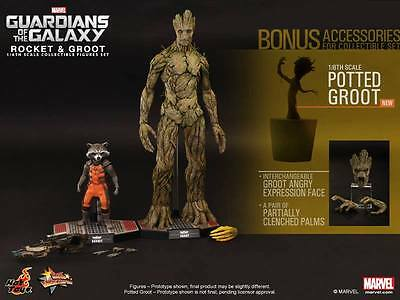 HOT TOYS 1/6 Guardians Of The Galaxy - Groot & Rocket - EXCLUSIVE Version - NEW!