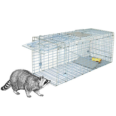 """Humane Small Live Animal Control Steel Trap Cage 32""""x12.5""""x12"""" Raccoon Skunk Cat"""