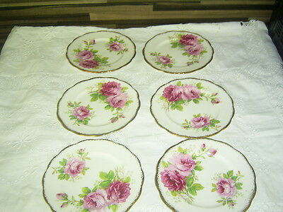 Set Of 6 Vintage Royal Albert American Beauty Side / Tea  Plates