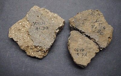 Early British Neolithic Clay Pottery Fragments 4000 Bc,