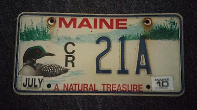 Maine Loon license plate colorful graphic  21A