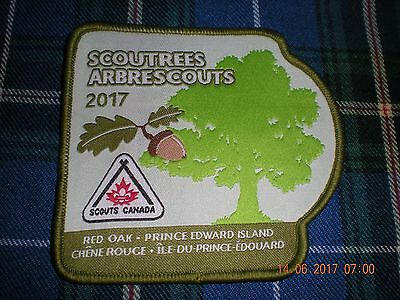 """boy scouts Canada """"Tress for Canada"""" 2017  badge patch mint new"""