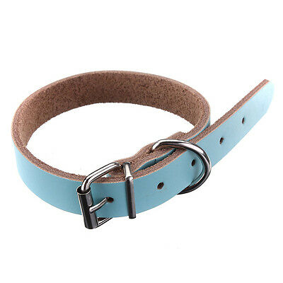 Leather collar For Dog Cat Pet Puppy Blue-M C1T5