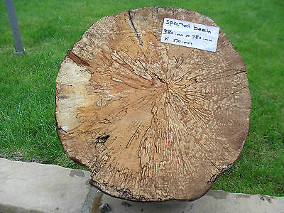 Spalted Beech Wood Turning 380.mm X 380.mm X 170.mm