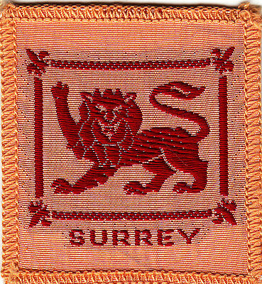 Boy Scout Badge 1950/60`s bound SURREY County