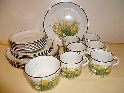 J & G Meakin Meadow Lane LifeStyle Oven to Tableware