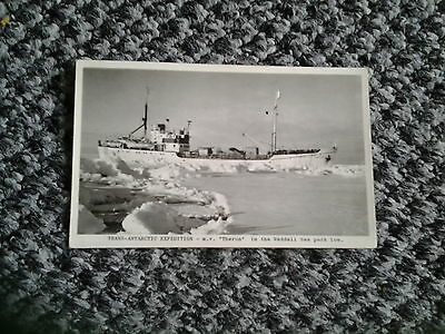 Old PC TRANS ATLANTIC EXPEDITION M.V.Theron In Sea Pack Ice RP