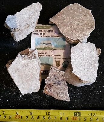 Ww2 German Relic Omaha Beach D Day Bunker France Operation Overlord