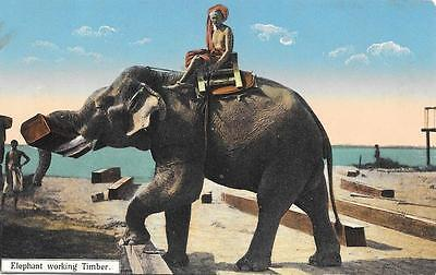 Early 1900s Elephant Working Timber Unused Burma Postcard 38