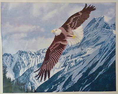 """Colour Printed Crewel to Work - """"Eagle"""""""