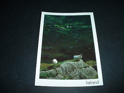 Irish Postcard .. Ireland
