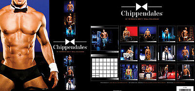 Chippendales 2011 Wall Calendar - Brand New Male Strippers