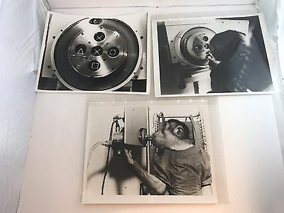 "NASA 1969 space monkey official press 8""x10"" 3 B&W Photos Biosatellite Primate"