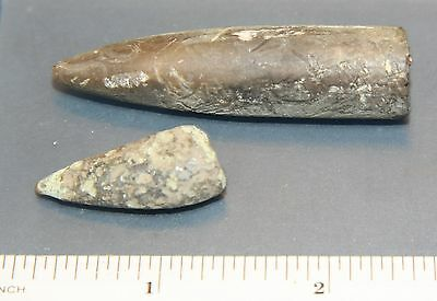 2 x BLACK BELEMNITE - FROM NORTHERN EUROPE