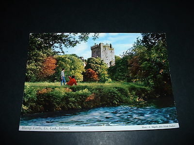 IRISH  POSTCARD BLARNEY CASTLE Co CORK   IRELAND (C7