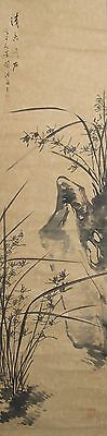 #7897 Japanese Hanging Scroll: Orchid on the Rock