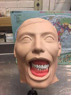 Dental Manikin Columbia Dentoform (New Shroud and Holder included)
