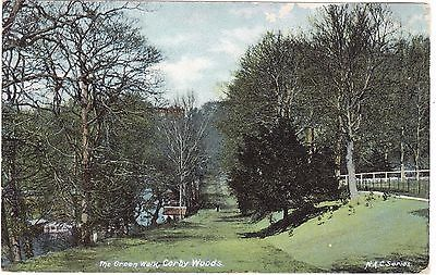 Vintage Old Colour P/c The Green Walk Corby Woods 1900's