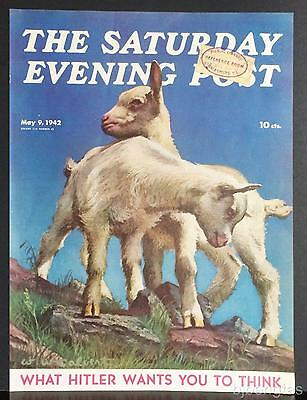 1942 WW Calvert Two White Kid Goats High Bluff Meadow SEP Print Cover Only