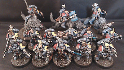 Warhammer 40k Space Wolves Start Collecting Pro Painted