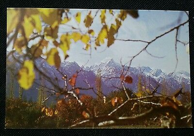 Pakistan International Airlines *snow Capped & Serene* Pia Issued Postcard!